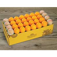Citrus Supply Club 1 Bushel Oranges
