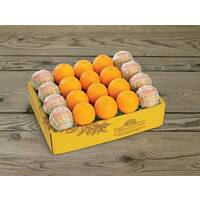 Citrus Supply Club 1 Dozen Oranges