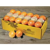 Citrus Supply Club 1 Bushel Grapefruit