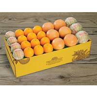 Citrus Supply Club 1 Bushel Mixed