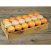 Citrus Supply Club 1/2 Bushel Grapefruit