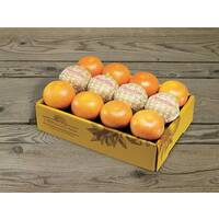 Citrus Supply Club 1 Dozen Grapefruit