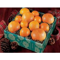 Navel Oranges, Ruby Red Grapefruit & Tangelos