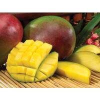 Tropical Mangoes