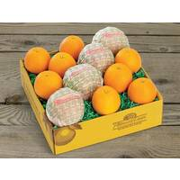 Citrus Supply Club 1/4 Bushel Mixed