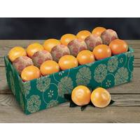 Citrus Value Packs